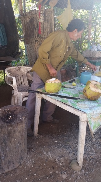 Fresh coconut water anyone?